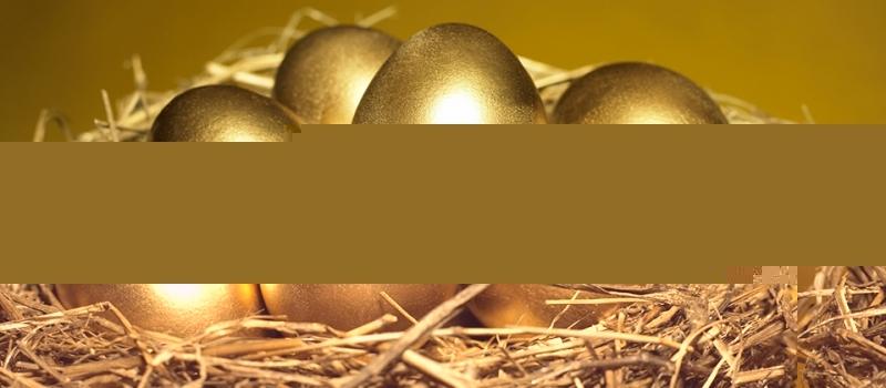 Google Apps: a Golden Goose … or just a Goose Egg?