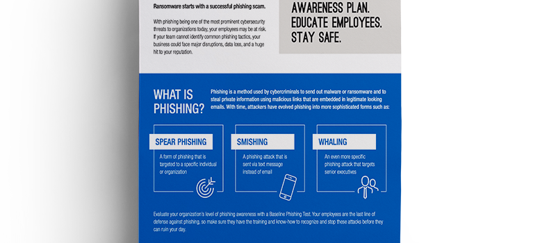 Brochure: <br/> Baseline Phishing Test