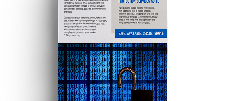 Brochure: <br/> Data Protection Services