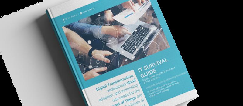 eBook: IT Survival Guide