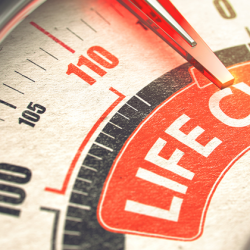 Product Life Cycle: Why Staying Up-to-Date and Supported Matters